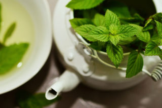 how to grow a tea garden