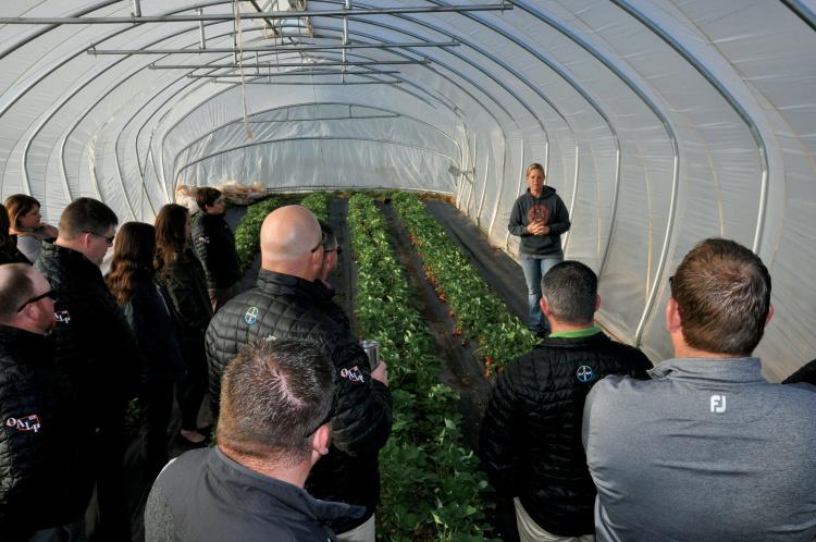 Oklahoma agriculture education