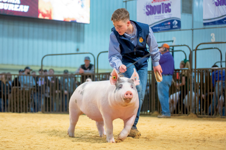Oklahoma state fairs
