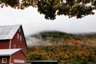 U.S. farm tours