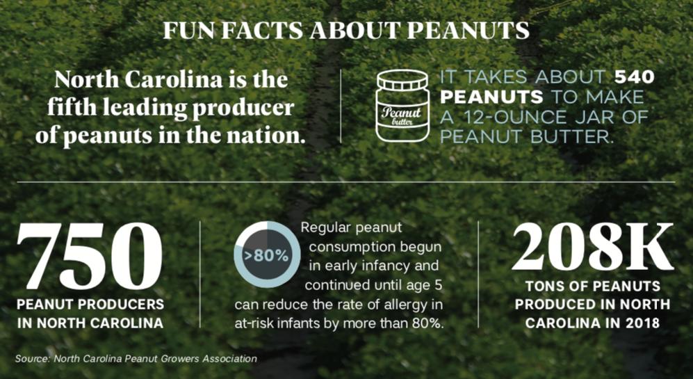 peanut allergy facts