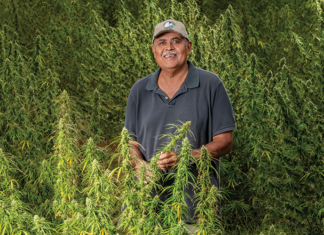 Clif Slade stands in the hemp field at this farm near Surry, Virginia.