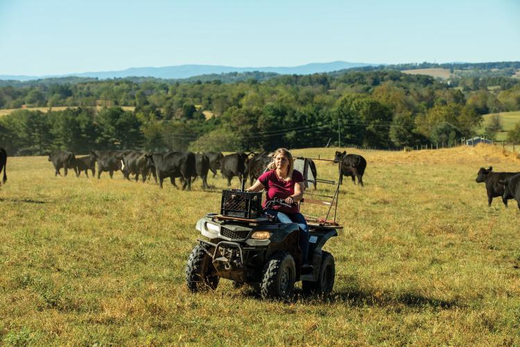 Virginia women in agriculture