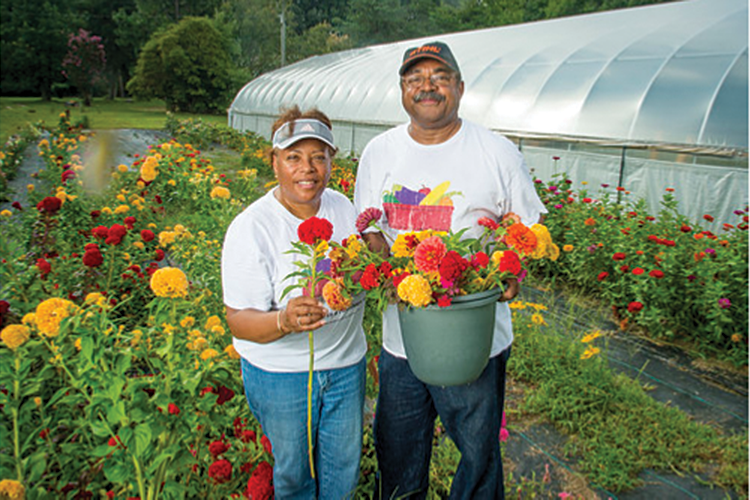 Virginia minority farmers