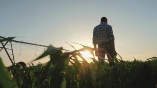 Tennessee Farmers Suicide Prevention Task Force