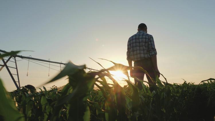 farmers mental health
