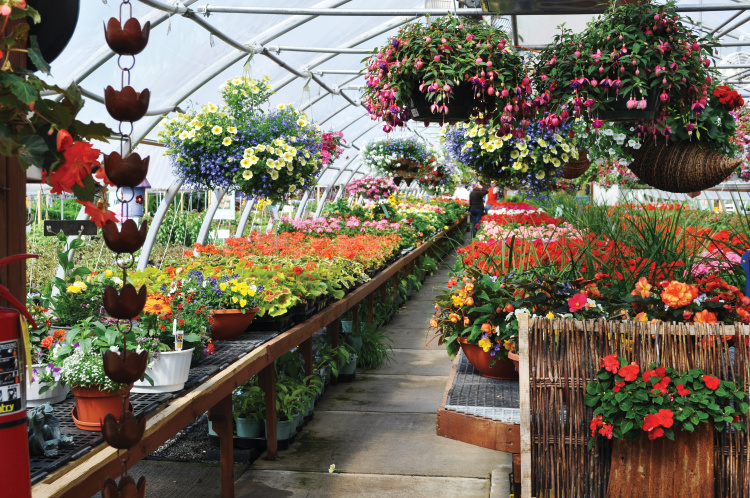 Wisconsin nurseries